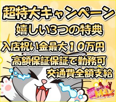 新春お年玉キャンペーン!!の画像