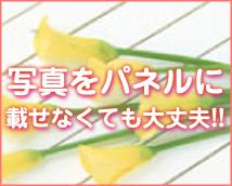 横浜ダンディグループ+画像9