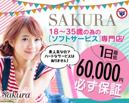 Sakura YESグループ+画像1