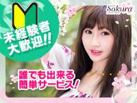 サクラ 土浦店+画像2