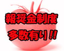 トマトの思い出 新宿店+画像6