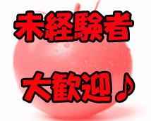 トマトの思い出 新宿店+画像8