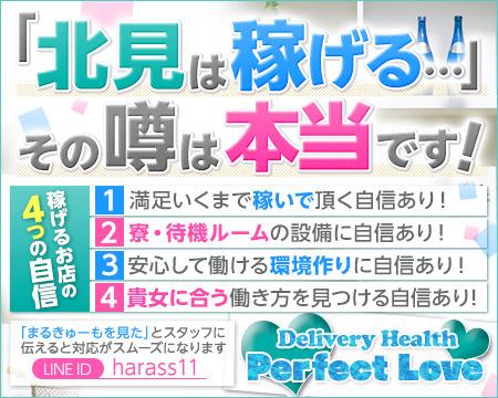 Perfect Love+画像1