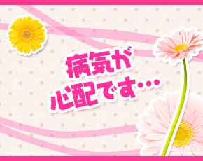 TSUBAKI-ツバキ-+画像3
