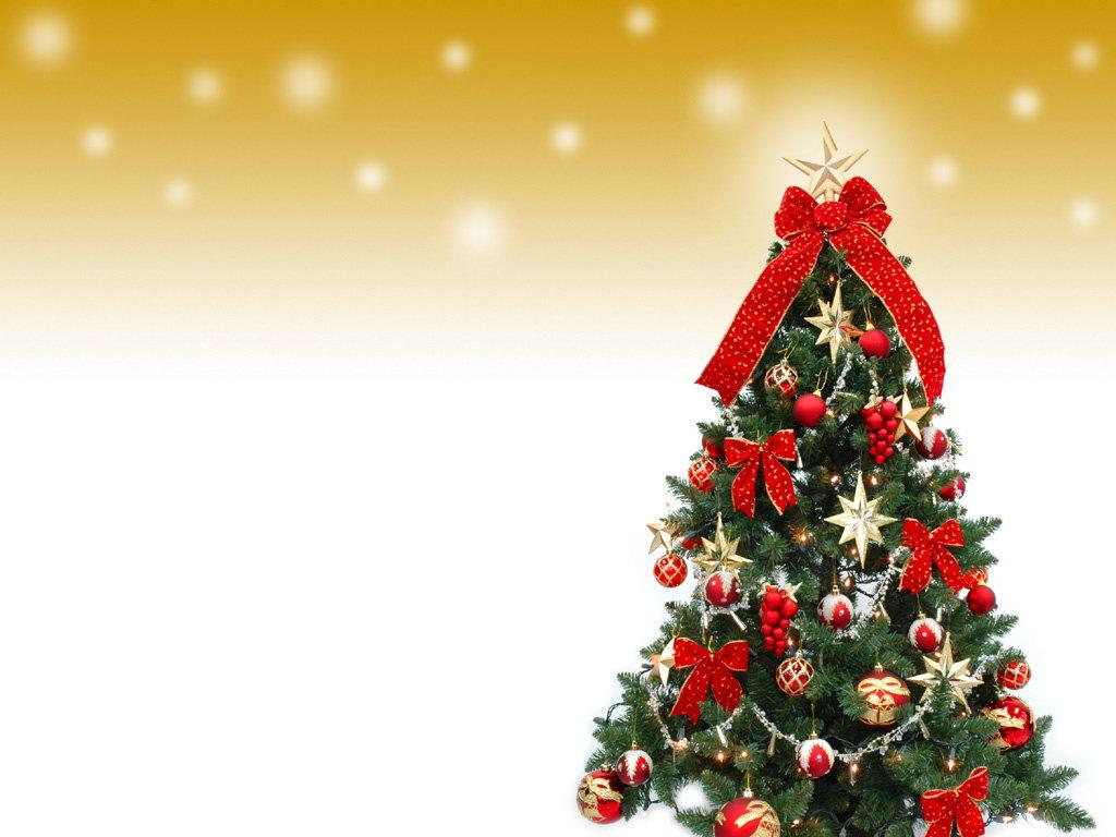 クリスマスに向けて今からの画像