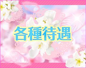 桜Moery+画像4